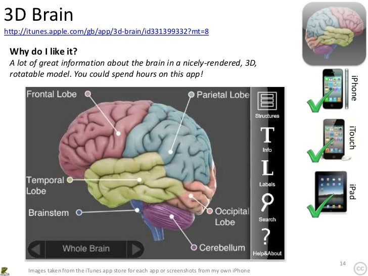 3D Brainhttp://itunes.apple.com/gb/app/3d-brain/id331399332?mt=8 Why do I like it? A lot of great information about the br...