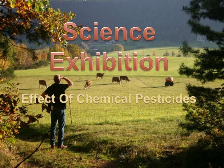 SCIENCE EXHIBITION   EFFECTS OF CHEMICAL PESTICIDES ON    ENVIRONMENT