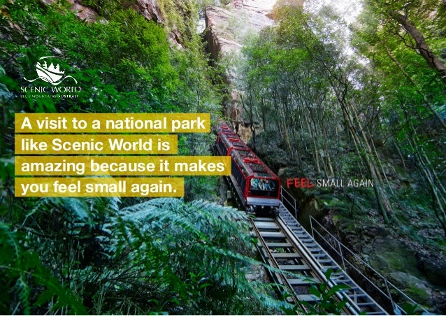 A visit to a national park like Scenic World is amazing because it makes you feel small again.