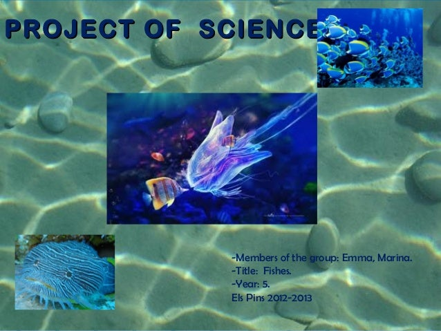 PROJECT OF SCIENCEPROJECT OF SCIENCE-Members of the group: Emma, Marina.-Title: Fishes.-Year: 5.Els Pins 2012-2013