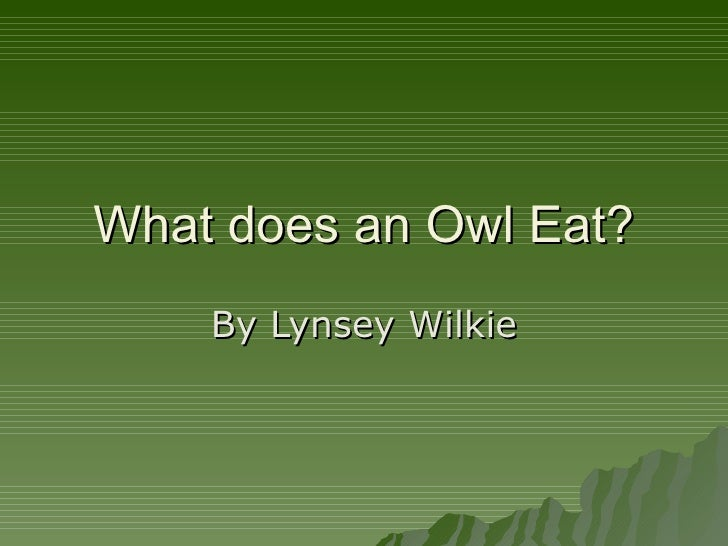 What does an Owl Eat? By Lynsey Wilkie