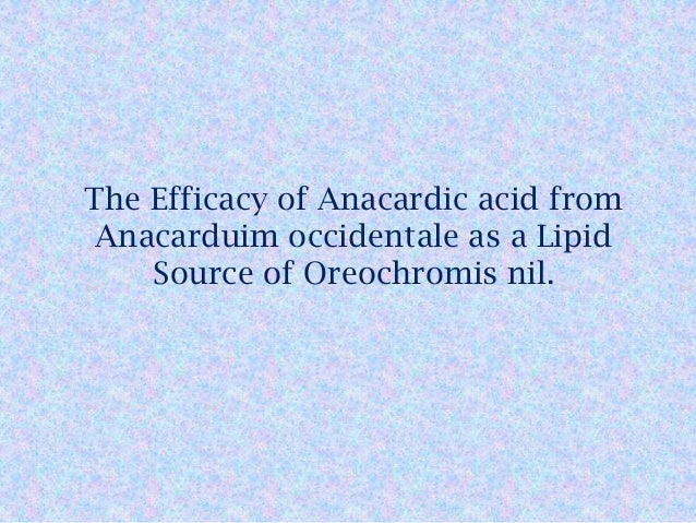 the efficacy of anacardic acid from anacarduim occidentale essay Natural product anacardic acid from cashew nut shells stimulates neutrophil extracellular trap production and bactericidal from anacardium occidentale.