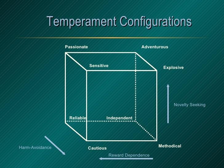 Temperament Configurations Explosive Adventurous Passionate Sensitive Methodical Cautious Reliable Independent Harm-Avoida...