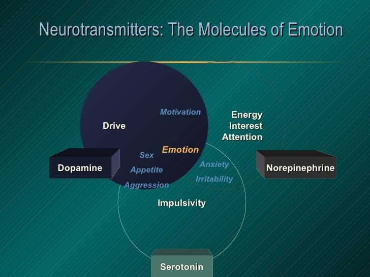 Neurotransmitters: The Molecules of Emotion Anxiety Irritability Motivation Sex Appetite Aggression Emotion Impulsivity Se...