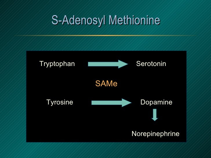 S-Adenosyl Methionine Tryptophan Tyrosine Serotonin Dopamine Norepinephrine SAMe