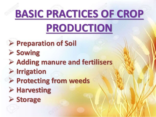 crop production and management Crop: crop when plants of the same kind is grown and cultivated at one place on a large scale , it is known as a crop types of crops the crops which are sown in the.