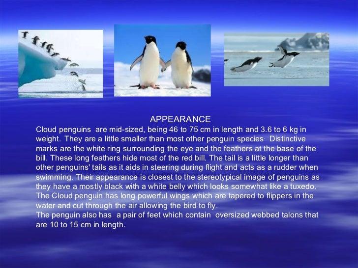 Science presentation Slide 3