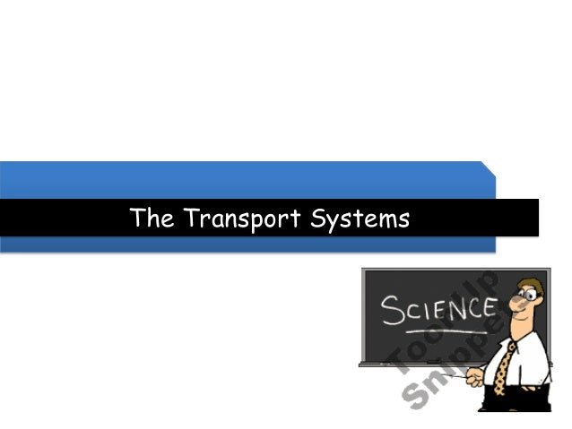 The Transport Systems