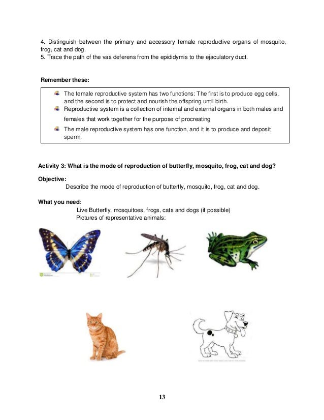 K to 12 grade 5 learners material in science q1 q4 remember these 14 38 ccuart Choice Image
