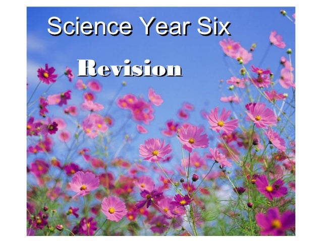 Science Year Six  Revision