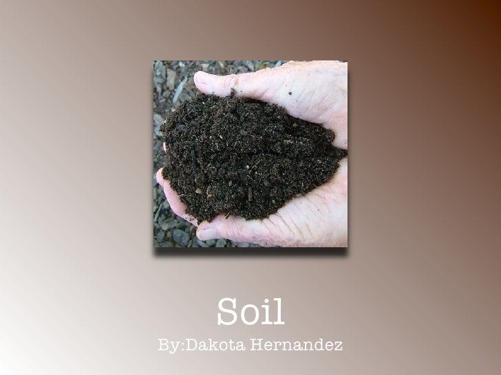 Soil By:Dakota Hernandez