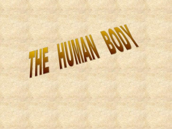 THE  HUMAN  BODY SCIENCIE  6º PRIMARIA  PILAR JUNQUERA YEGUAS