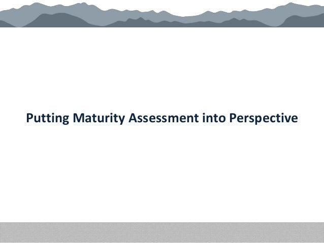 Putting Maturity Assessment into Perspective