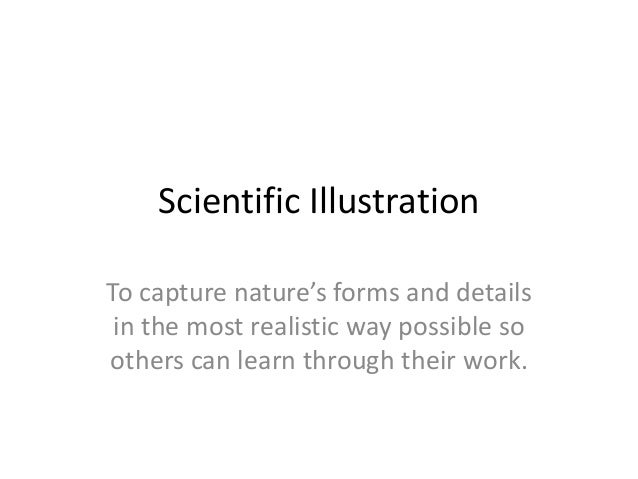 Scientific Illustration To capture nature's forms and details in the most realistic way possible so others can learn throu...