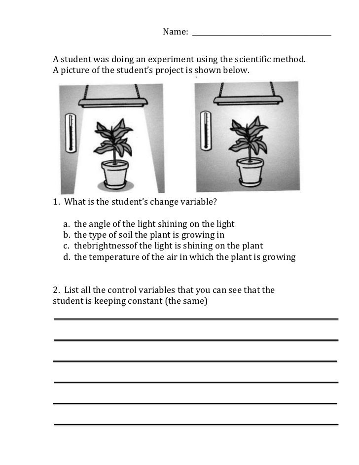 Worksheet Scientific Method Worksheets For Middle School scientific method variables worksheet student was doing an experiment using the method