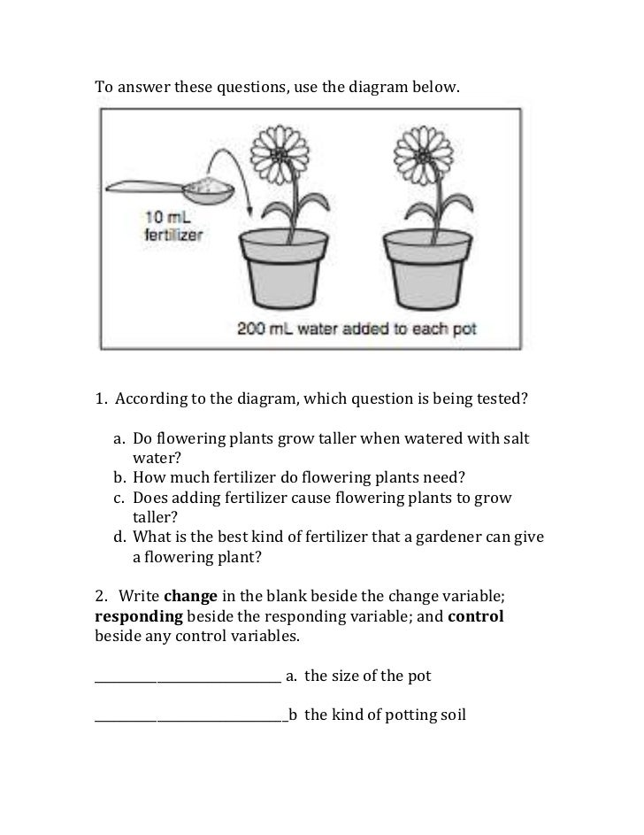 Scientific method variables worksheet – What is Science Worksheet