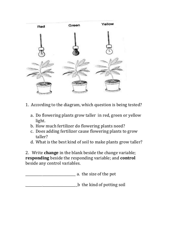 Scientific method variables worksheet – Scientific Method Worksheet