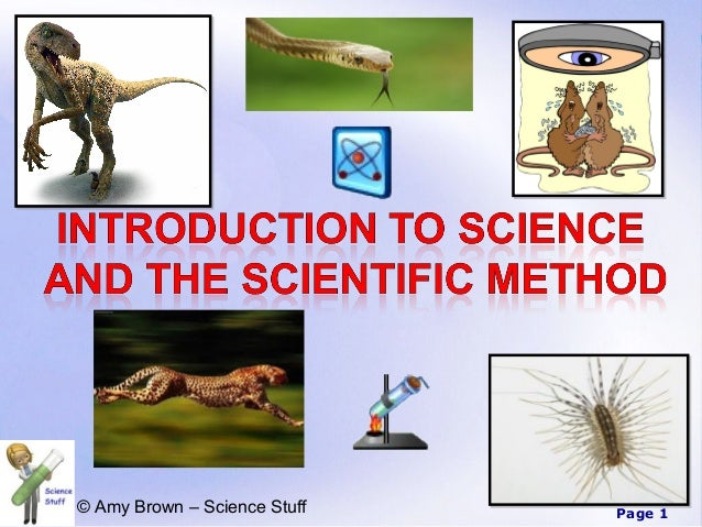 © Amy Brown – Science Stuff   Page 1