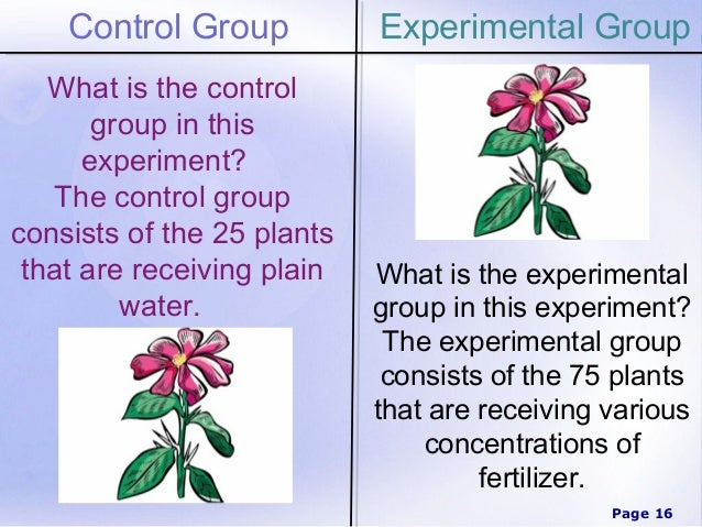Experiment Group 50
