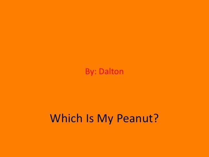 By: Dalton<br />Which Is My Peanut?<br />