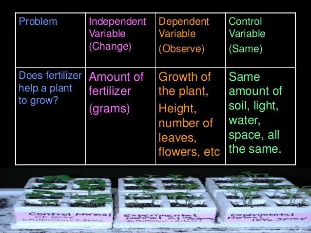 Problem Independent Variable (Change) Dependent Variable (Observe) Control Variable (Same) Does fertilizer help a plant to...