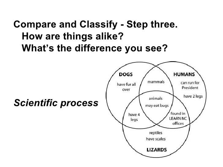 Scientific Process Song