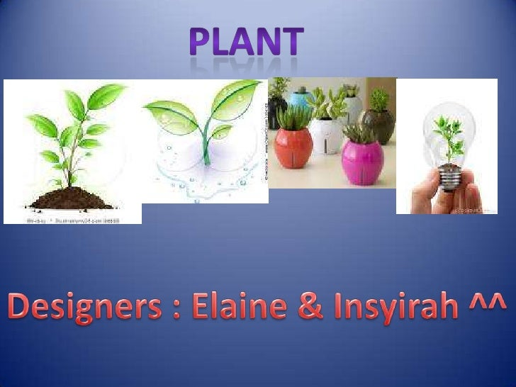 About plant !• Plant need air , water and food to survive.• All plant are able to make their own food.• Some plant provide...