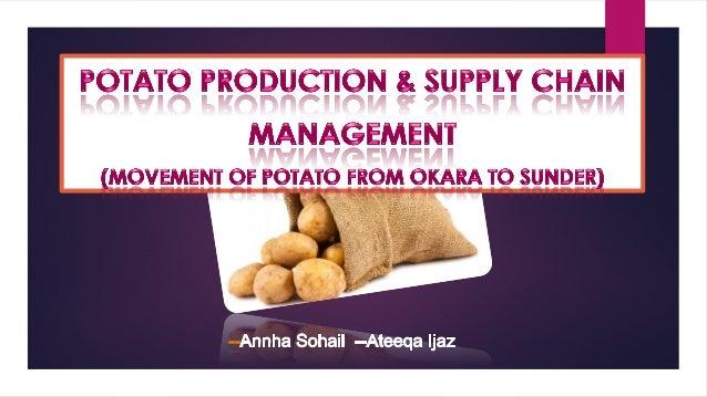 Potatoes Supply chain Management from Okara to Sunder state