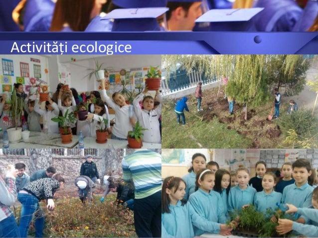 Activități ecologice