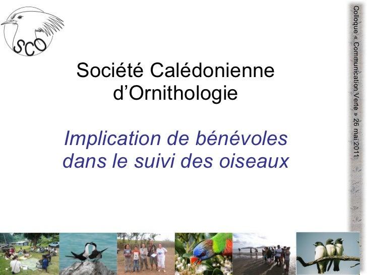 Société Calédonienne d'Ornithologie Implication de bénévoles dans le suivi des oiseaux