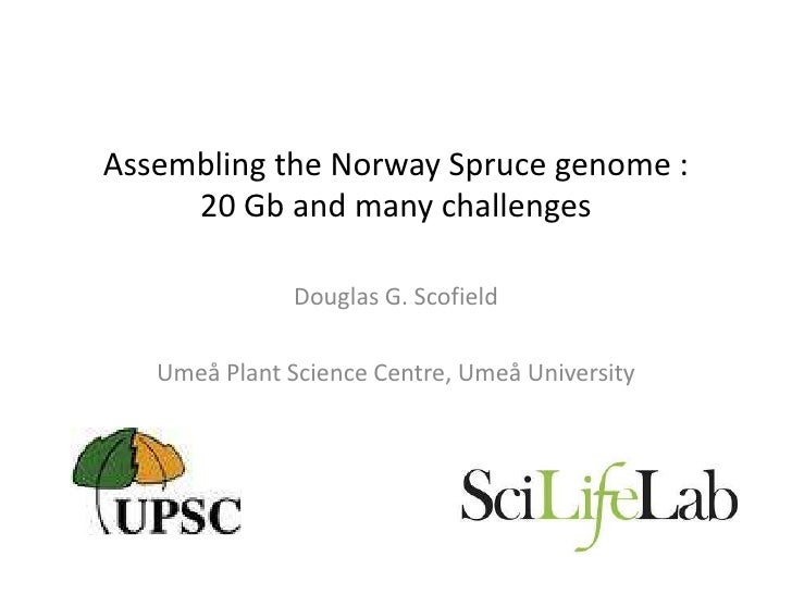 Assembling the Norway Spruce genome :     20 Gb and many challenges               Douglas G. Scofield   Umeå Plant Science...
