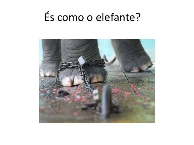 És como o elefante?