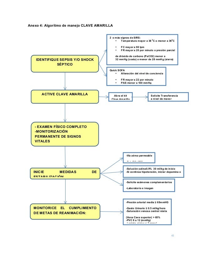 43 Anexo 4: Algoritmo de manejo CLAVE AMARILLA  IDENTIFIQUE SEPSIS Y/O SHOCK SÉPTICO 2 o más signos de SIRS: • Temperatur...