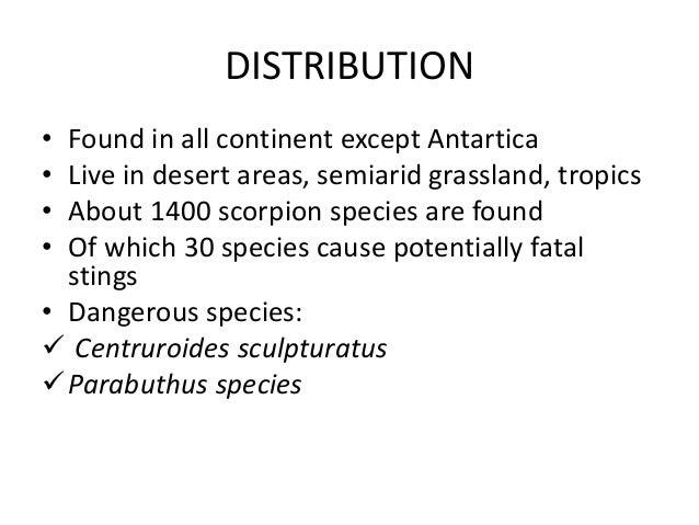 Centruroides sculturatus