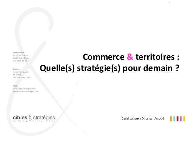 """1 Pays de Lorient- """" Commerce & territoires : Quelle(s) stratégie(s) pour demain ? """" David Lestoux / Directeur Associé Com..."""
