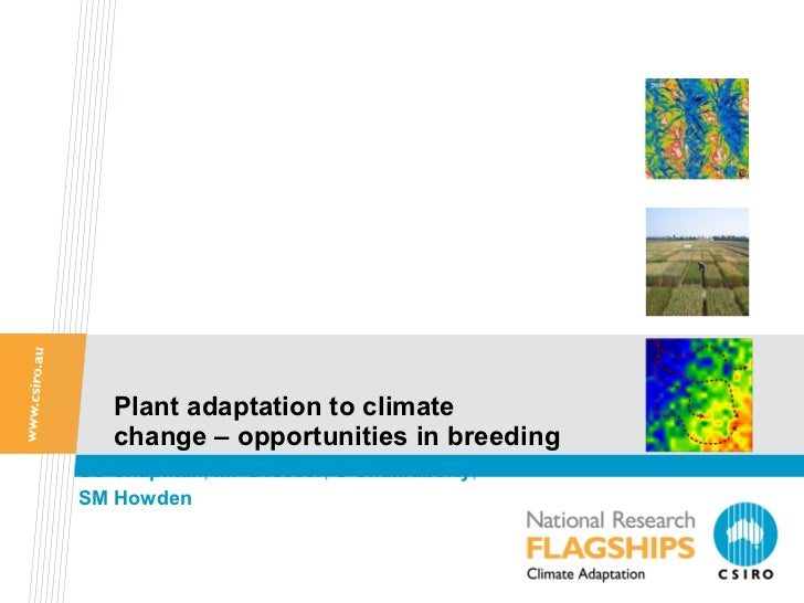 Plant adaptation to climate  change – opportunities in breeding SC   Chapman ,  MF Dreccer ,  S Chakraborty ,  SM Howden