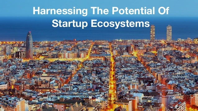 Harnessing The Potential Of Startup Ecosystems
