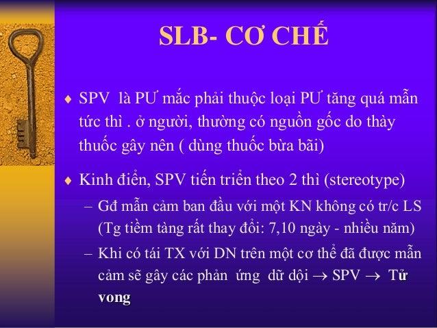 SLB- CƠ CHẾ  SPV là PƯ mắc phải thuộc loại PƯ tăng quá mẫn tức thì . ở người, thường có nguồn gốc do thày thuốc gây nên (...