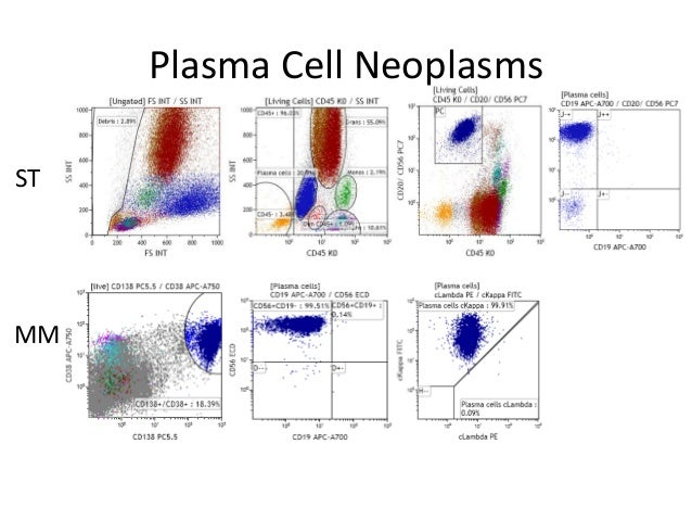 Ten Color 14 Antibody Flow Cytometry Fcm Screening Tube