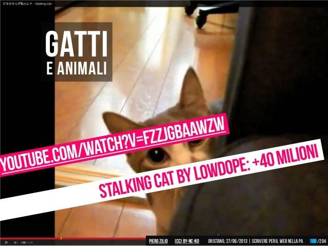E animali Gatti Piero ZILIO /204Oristano,27/06/2013| Scrivere peril web nella PA(CC)by-nc-nd 186