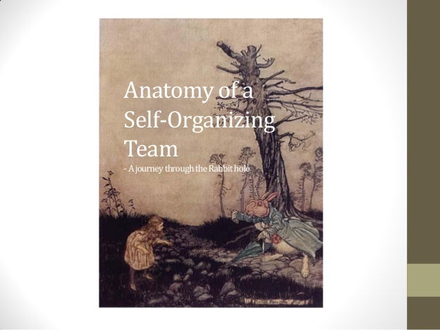 Anatomy of a Self-Organizing Team -AjourneythroughtheRabbithole