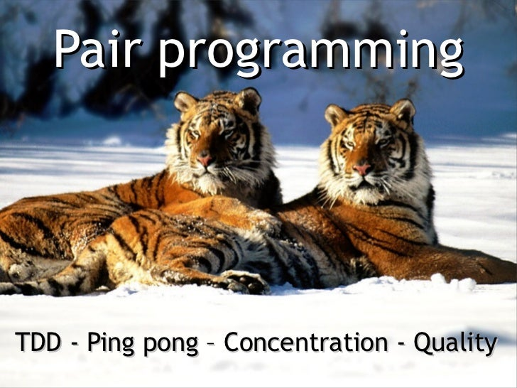Pair programmingTDD - Ping pong – Concentration - Quality