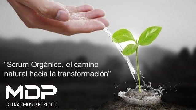 """""""Scrum Orgánico, el camino natural hacia la transformación"""""""