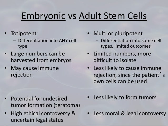 Adult Stem Cell Embryonic Stem Cell 76