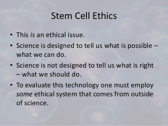 stem cells ethics essay