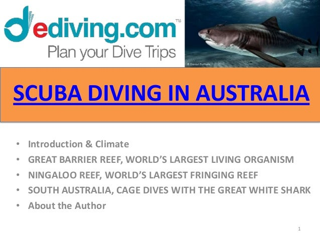 SCUBA DIVING IN AUSTRALIA•   Introduction & Climate•   GREAT BARRIER REEF, WORLD'S LARGEST LIVING ORGANISM•   NINGALOO REE...