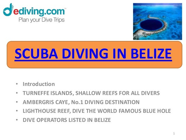 SCUBA DIVING IN BELIZE•   Introduction•   TURNEFFE ISLANDS, SHALLOW REEFS FOR ALL DIVERS•   AMBERGRIS CAYE, No.1 DIVING DE...