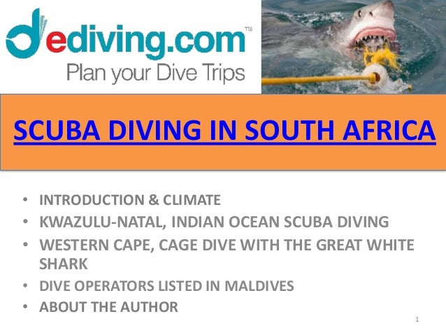 SCUBA DIVING IN SOUTH AFRICA• INTRODUCTION & CLIMATE• KWAZULU-NATAL, INDIAN OCEAN SCUBA DIVING• WESTERN CAPE, CAGE DIVE WI...