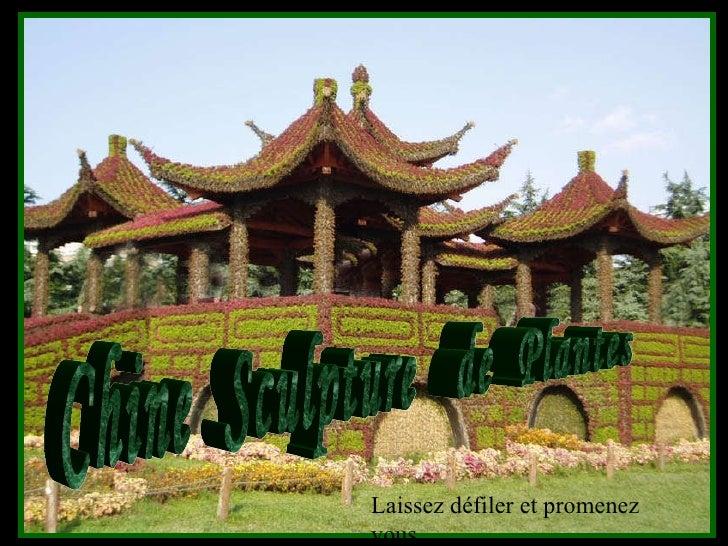 Chine  Sculpture  de  Plantes Laissez défiler et promenez vous