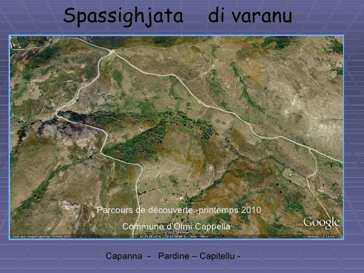 Spassighjata  di varanu Capanna  -  Pardine – Capitellu -   Parcours de découverte -printemps 2010 Commune d'Olmi Cappella